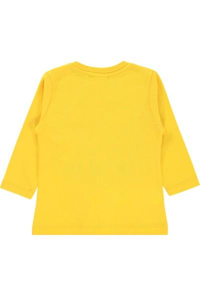 Harry Potter Erkek Bebek Sweatshirt 6-18 Ay Hardal