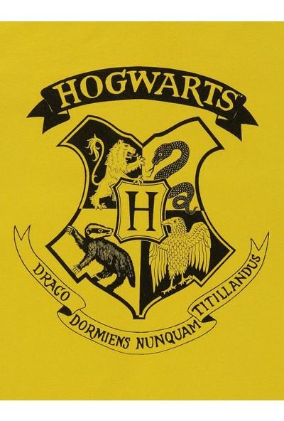 Harry Potter Erkek Çocuk Sweatshirt 10-13 Yaş Sarı