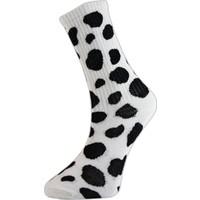 Cool Store Dalmaçyalı Kolej Çorap