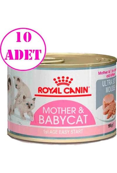 Royal Canin Babycat Instinctive Konserve 195 gr 10 Adet