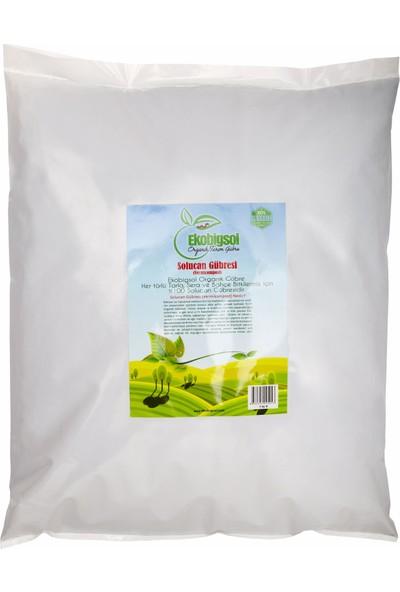 Ekobigsol %100 Organik Katı (Granül) Solucan Gübresi 5 kg