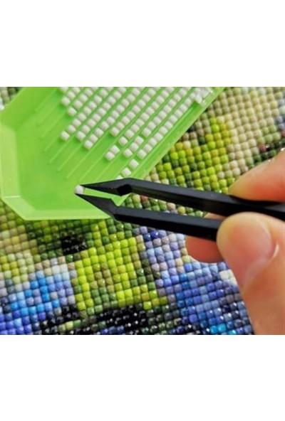 DIY Boncuklu Taşlı Mozaik Elmas Goblen Pano Tablo Resim Puzzle Çocuklar Için 21 x 25 cm