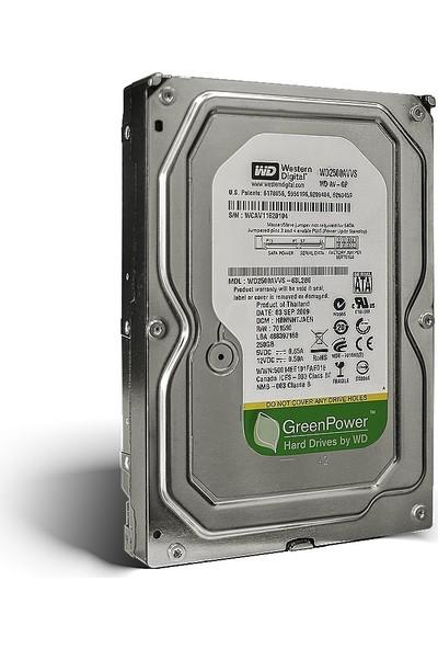 """WD 250GB 7200RPM 3.5"""" Sata 3 Sabit Disk (WD2500AVVS)"""