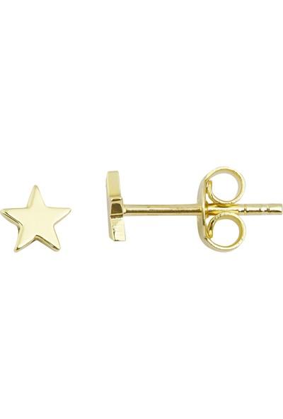 Melike Gold 14 Ayar Altın Minimalist Yıldız Küpe