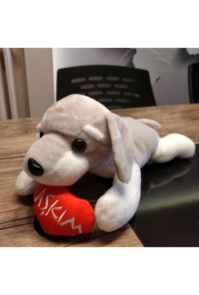 Yumurcak Kalpli Aşkım Peluş Gri Köpek 40 cm