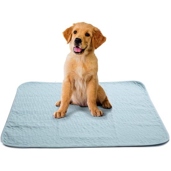 Abso 4 Katlı Yıkanabilir Emici Koku Yapmaz Köpek Çiş Pedi 75 x 85 cm