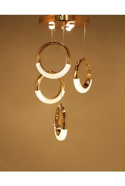 Luna Lighting Modern Luxury LED 4'lü Halka 2021 Gold Sarı Ledli Avize