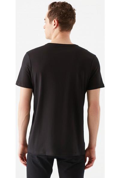 Mavi Erkek Mavi Mühür Logo Baskılı Siyah Tişört 065641-900