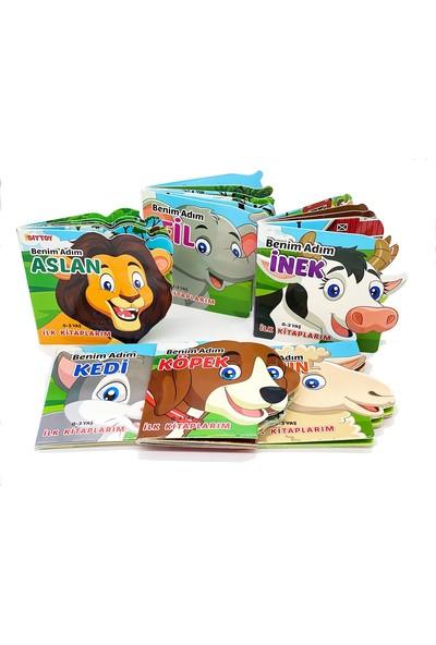 Diy Toy Ben Kimim Hayvanlar 6'lı Set