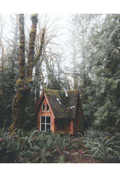 Termofom Ormandaki Issız Ev Tasarımlı Poster (50X70)