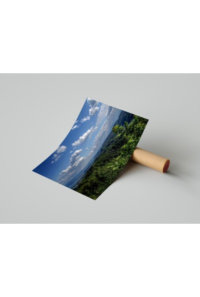 Termofom Doğa Kompozisyonlu Poster (70X100)