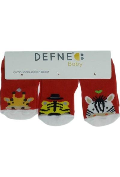 Defne Baby Erkek Bebek Üçlü Yıkanmış Çorap