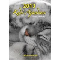 2013 Kedi Ajandası