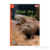 What Are Otters Like? + Downloadable Audio (Compass Readers 2) A1-Kelly Daniels