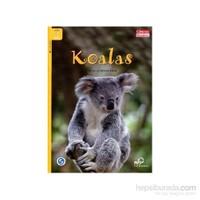 Koalas +Downloadable Audio (Compass Readers 3) A1