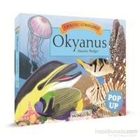 3D Okyanus Pop Up - Maurice Pledger