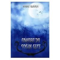 Ankara'da Soğuk Gece
