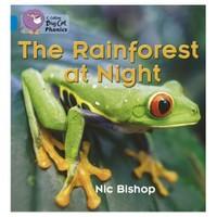 The Rainforest At Night (Big Cat Phonics-4 Blue)