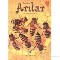 İlk Okuma Arılar