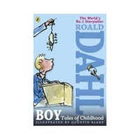 Puffin Boy Tales Of Childhood Road Dahl