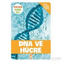 DNA ve Hücre