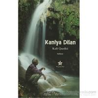 Kaniya Dilan-Kale Qurdisi