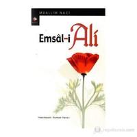 Emsal-İ Ali