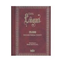 Özel Lügat - 25.000 Kelime-terim-terkip (Ciltli)