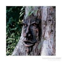 The Spirit Of Nottingham Woods: Ağaç Heykel
