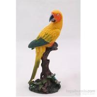 Papağan Figürlü Biblo