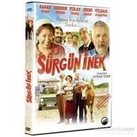 Sürgün İnek (DVD)