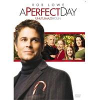 A Perfect Day (Kusursuz Gün)