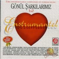 Gönül Şarkılarımız 1&2 (enstürmental) (cd)