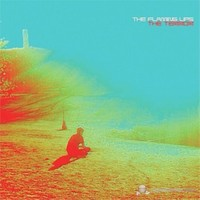 The Flaming Lips - The Terror (LP)