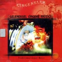 Geleneksel Çingene Müziği (cd)