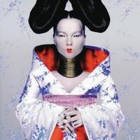Björk - Homogenıc