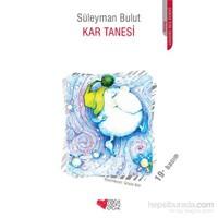 Kar Tanesi - Süleyman Bulut