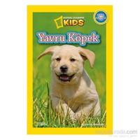 National Geographic Kids: Yavru Köpek