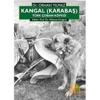Kangal (Karabaş) Türk Çoban Köpeği