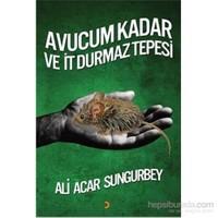 Avucum Kadar Ve İt Durmaz Tepesi-Ali Acar Sungurbey