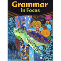 Grammar in Focus 3 with Workbook +CD