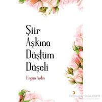 Şiir Aşkına Düştüm Düşeli-Ergün Aydın