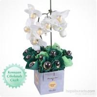 ChocChic Beyaz Orkide Çikolatalı Konuşan Çiçek