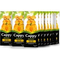 Cappy Kayısı 200 ml Tetra 27'li