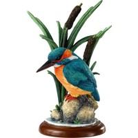 Border Fine Arts Kingfisher Biblo