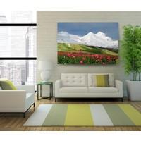 Evdeka Karlı Dağlar Temalı Kanvas Tablo