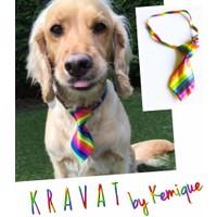 Kemique Kravat By Kemique - Gökkuşağı