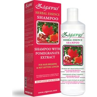 Zigavus Uzamayan ve Kırılan Saçlar için Nar Ekstraklı Şampuan 450ml
