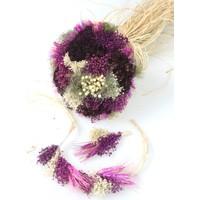 Kuru Çiçek Gelin Çiçeği Mor Şöleni 3lü Set