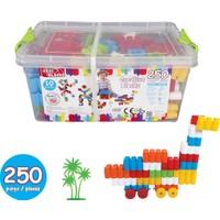 Akar 250 Parça Zeka Blokları 01-107 Kutulu